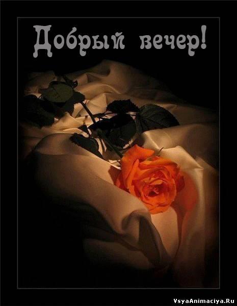 http://vsyaanimaciya.ru/_ph/171/2/808654054.jpg
