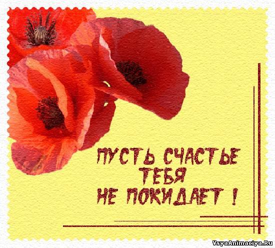 http://vsyaanimaciya.ru/_ph/176/2/121477815.jpg