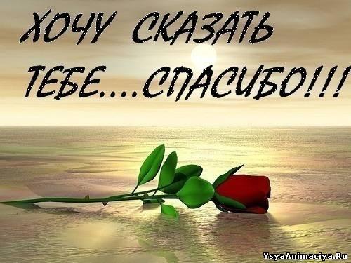 http://vsyaanimaciya.ru/_ph/217/2/652288409.jpg