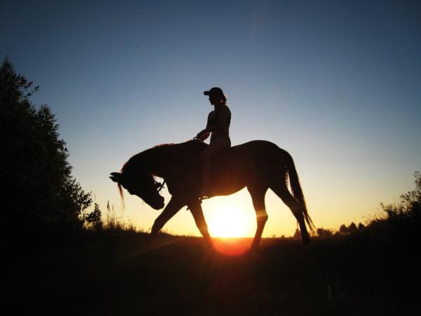 Фото девушек на закате солнца